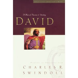 David A Man Of Passion And Destiny (Paperback, Large Print)