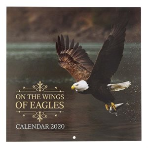 2021 Wings of Eagles Wall Calendar